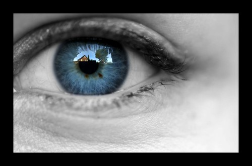 The world through my eye by ms holmes
