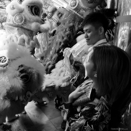 chinese new year celebrations - street lion dance.