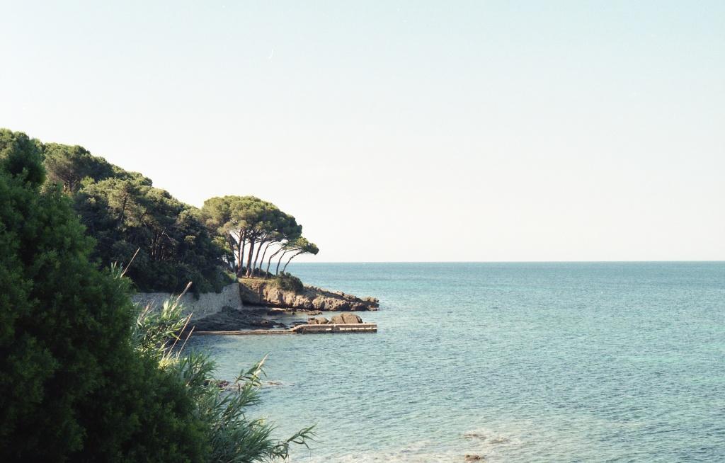 Golfo Stella