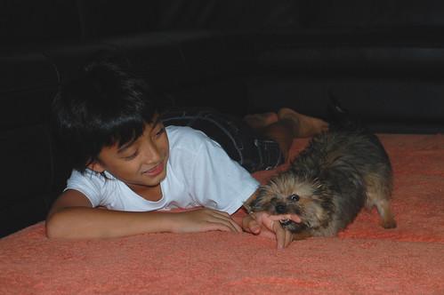 204/365 Puppy love