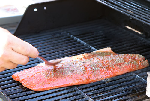 Grilled Teriockeye Salmon 5