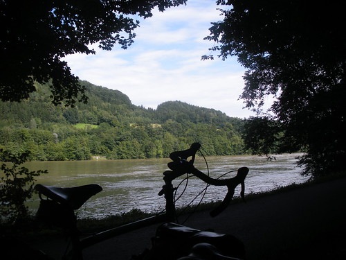 Shady gorge on Danube above Ybbs