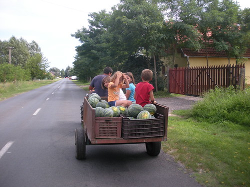 Load of chilcren and watermelons