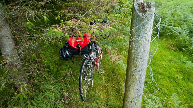 My bike, hidden away