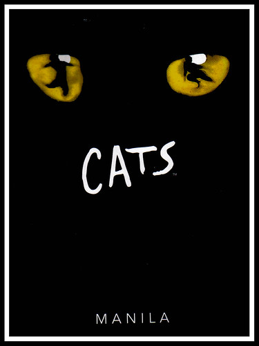 cats cover