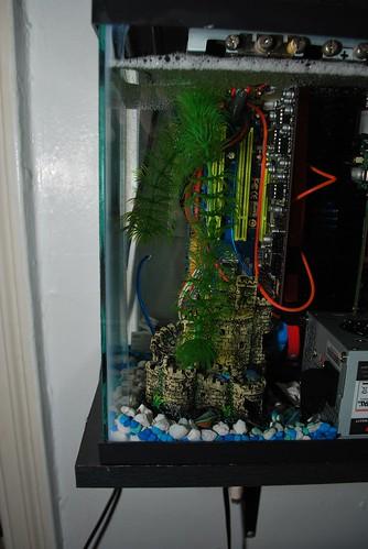 Aquarium_PC29