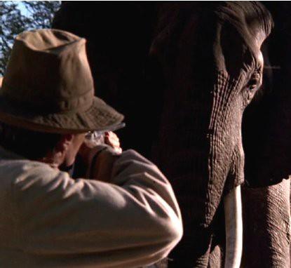 10g11 Clint Eastwood Cazador blanco corazón negro