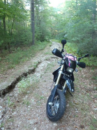 Austin Farm Road, aka a washed out river bed