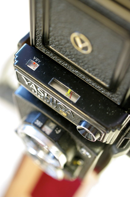 Yashica Mat 124G -- a lovely TLR