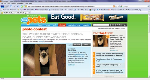 cinny on people pets feature