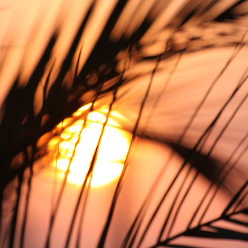 with each sunrise.....