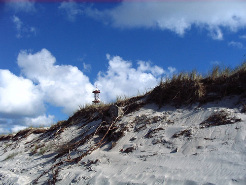 Dunes on the Darß, Baltic Sea