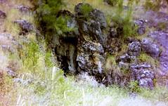 Borenore Caves Reserve