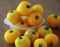Yellow Tomato Preserves