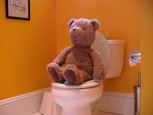 Poop on the Potty