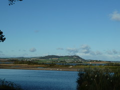 View from lunch at Castle Espie