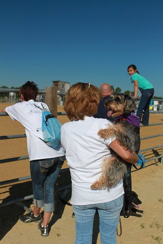 Bark for Life -Woman Holds Dog