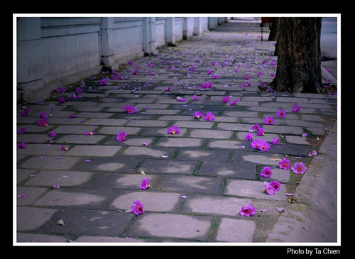 images1324622_banglangS