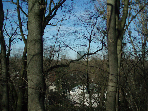 Zwölf2010_Nov2