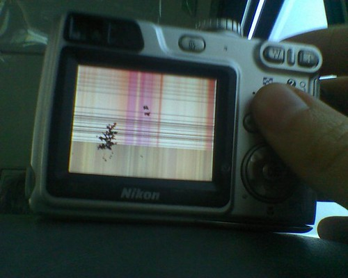 stripyscreen