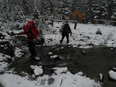 Snowy River Crossing near Curator