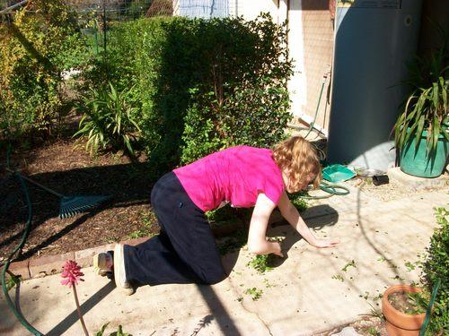 Live Action - Gardening