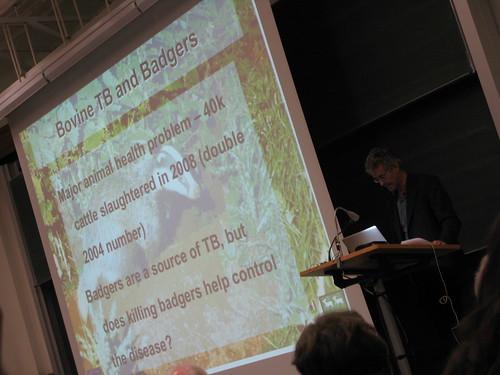 Lord Krebs talks badgers