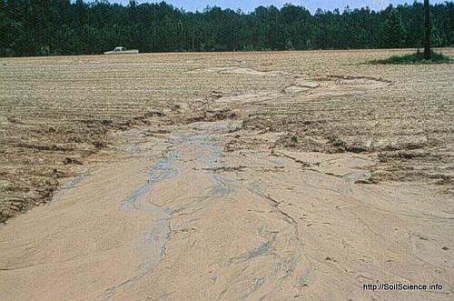 Erosion: courtesy of Soil Science