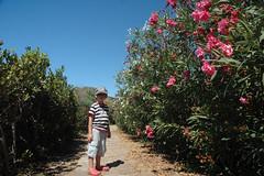 Naxos: Auf dem Weg zum Dimitra-Tempel