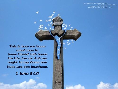 1 John 3:16 (manywallpapers.com)