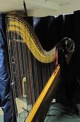 Harp at Treacle
