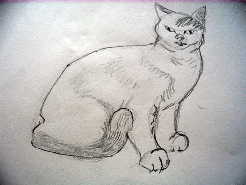 Another cat, drawn with graphite pencil