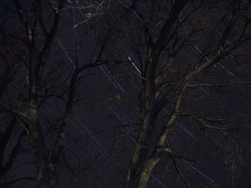 Star Trails -- Oct. 7th, 2010