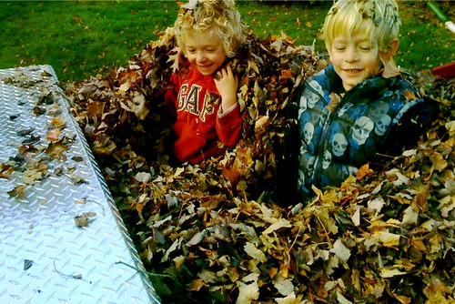 Leaf pile in the truck