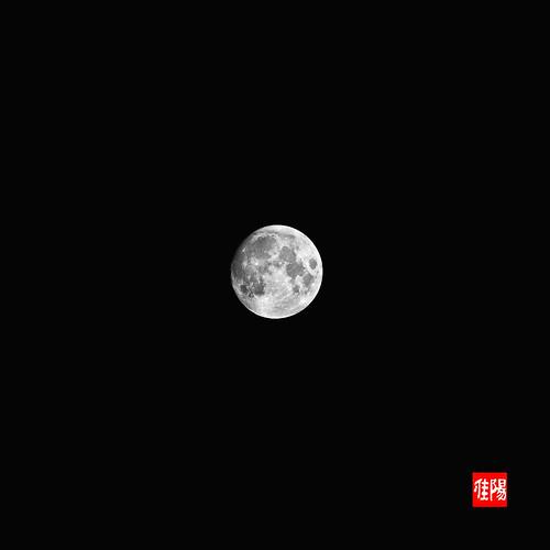 D80-CHI_Luna01_2010-06_24B