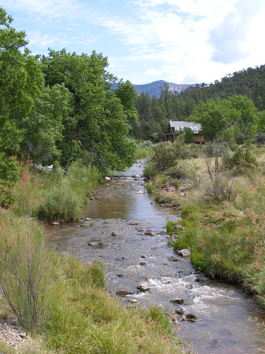 A Picture From New Mexico's Jemez Mountains