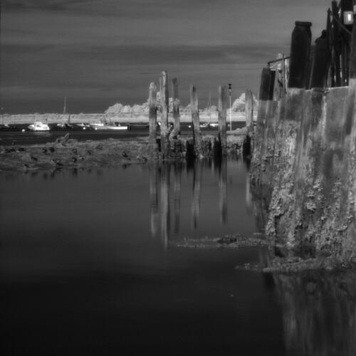 Bosham Harbour pilings