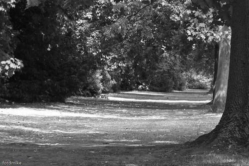Bedford Park P1040906