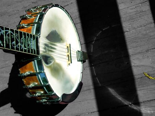 banjo and leaf