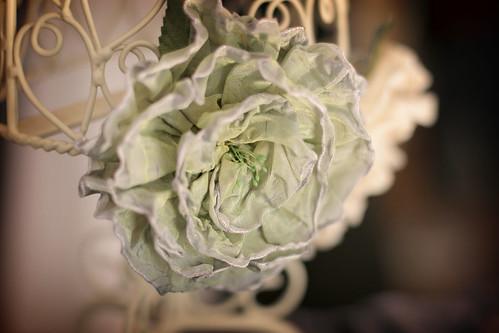Ribbon flower, natural