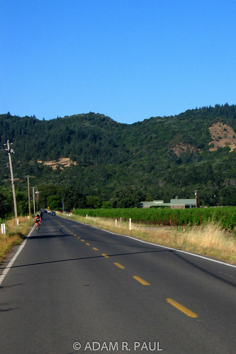 Crossing Napa Valley