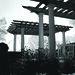 the ART of Landscape Design - Landscape Structures in Black & White