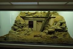 334 - 2017 07 01 - Oude siamangverblijven gerenoveerd voor kleine zoogdieren