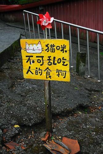 貓咪不可亂吃人的食物