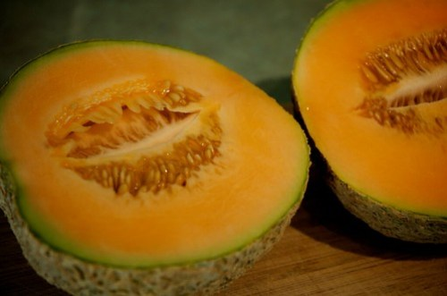 Surprise cantaloupe!