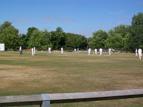 Cricket on the Woodford green