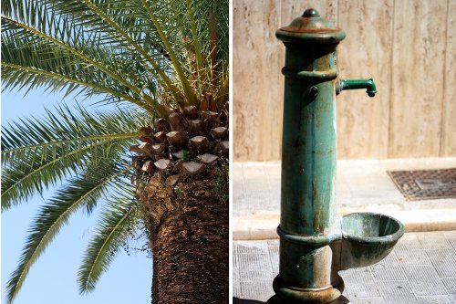 Palm trees and fountains in Puglia