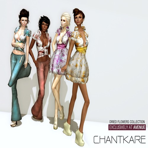CHANTKARE - Dried Flowers __ Couture AVENUE Exclusive