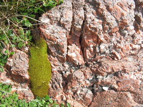 Rocks at Sandwood Bay