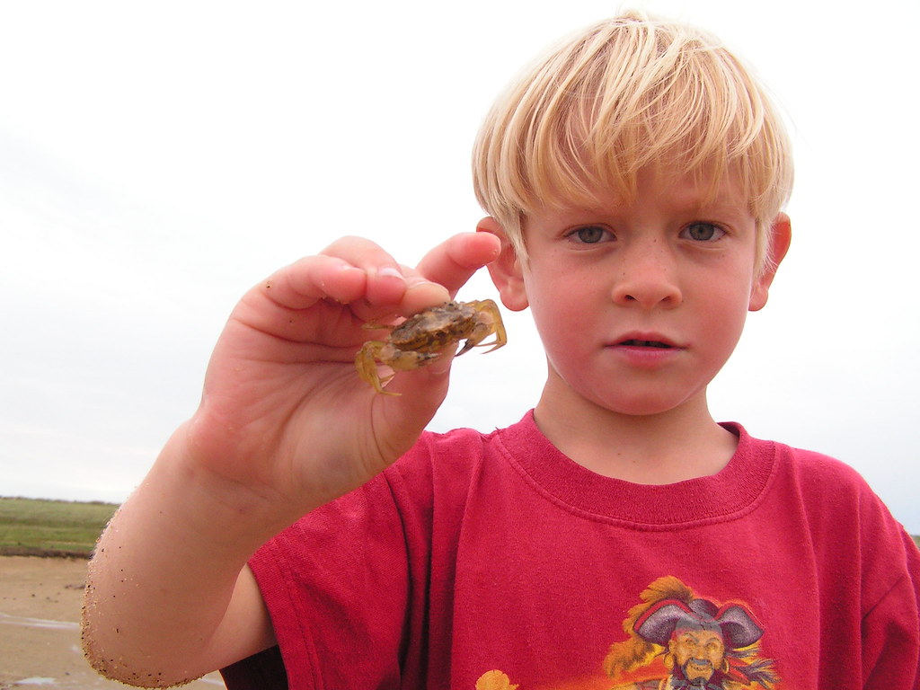 Max, with a captured crab